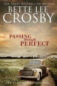Bette Lee Passing Through Perfect - Ebook